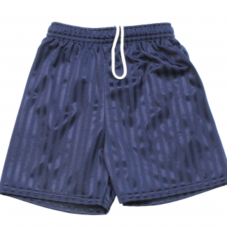 Navy Blue Shadow Stripe PE Shorts
